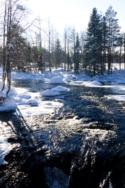 Rapids Oulanka National Park